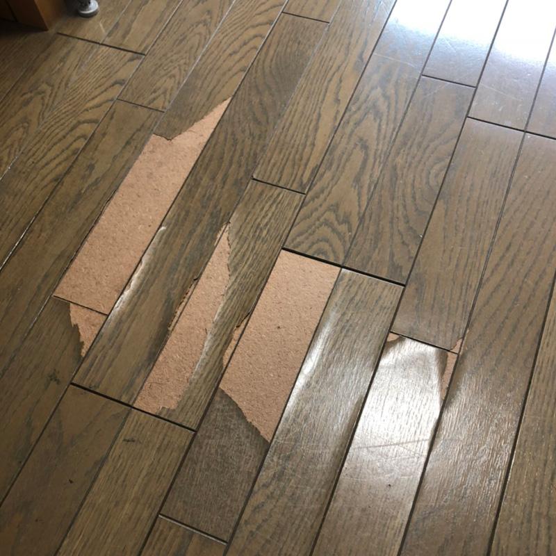 フローリング単板のメクレの補修