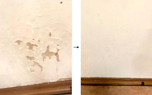 ペット壁ビフォーアフター